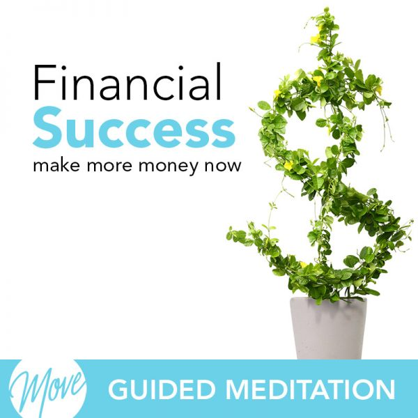 Financial Success Guided Meditation